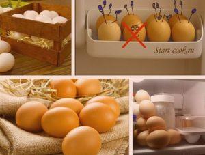 Способы хранения яиц
