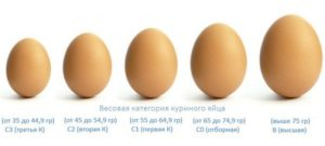 Категории куриных яиц