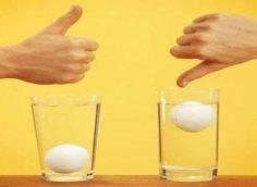 Определение тухлости яйца