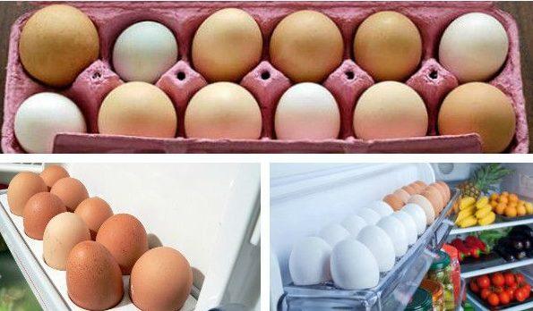 Условия хранения яиц