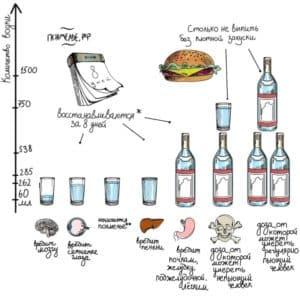 Вред наносимый организму в зависимости от выпитого спиртного