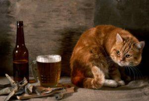 Испорченное пиво