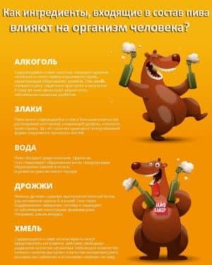 Влияние ингредиентов пива на организм человека