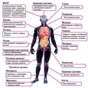 Необратимые последствия воздействия алкоголя на органы человека