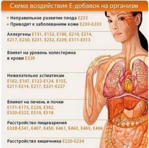 Схема воздействия E-добавок на организм