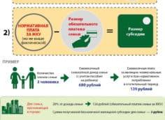 Форма расчета обязательного платежа и размера субсидии