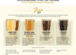 Основные сорта пива: Эль