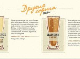 Основные сорта пива: Другие сорта