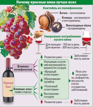 Почему красные вина лучше всех
