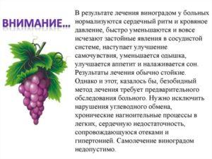 Лечение виноградом