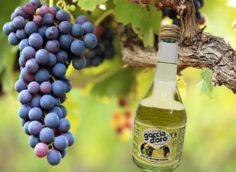 Виноградный уксус в бутылке