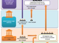 Схема движения дела в арбитражных судах